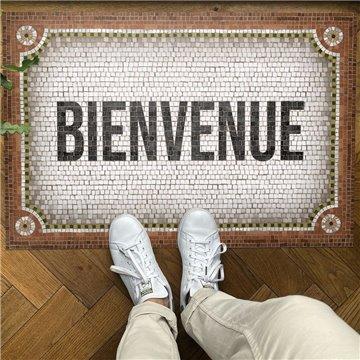 Mosaique Bienvenue Terracota
